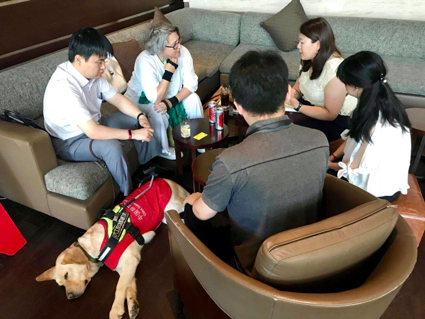 A group of people talking around a table. Most are of Asian descent. there is also a guide dog resting on the floor.