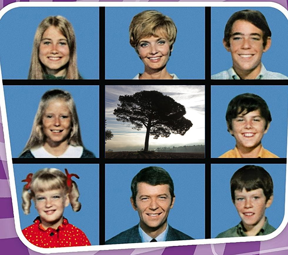 Still from The Brady Bunch showing each family member in a square, creating nine squares on a grid. The middle grid has been replaced by a photo of some trees.